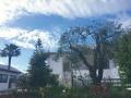 Panoramica Montepulciano