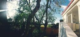 Giardino della Camera NegroAmaro
